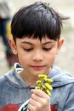 λουλούδια ανεμιστήρων Στοκ φωτογραφία με δικαίωμα ελεύθερης χρήσης