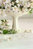 Λουλούδια ανθών της Apple vase Στοκ εικόνα με δικαίωμα ελεύθερης χρήσης