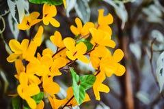 Λουλούδια από τα τεχνητά ελαφριά λουλούδια ακακιών υλικών κίτρινα, κίτρινα στοκ φωτογραφία