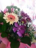 Λουλούδια από τη Ρουμανία Στοκ φωτογραφία με δικαίωμα ελεύθερης χρήσης