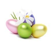 λουλούδια αυγών Πάσχας &ka Στοκ Φωτογραφίες