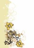 λουλούδια βρώμικα Στοκ εικόνες με δικαίωμα ελεύθερης χρήσης
