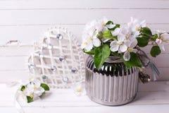 Λουλούδια δέντρων της Apple στο βάζο και τη διακοσμητική καρδιά στο άσπρο woode Στοκ Φωτογραφία