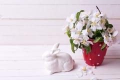 Λουλούδια δέντρων της Apple στο κόκκινα φλυτζάνι και το λαγουδάκι Πάσχας άσπρο σε ξύλινο Στοκ εικόνες με δικαίωμα ελεύθερης χρήσης