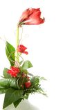 λουλούδια δεσμών στοκ φωτογραφία με δικαίωμα ελεύθερης χρήσης