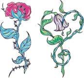 λουλούδια δύο διανυσματική απεικόνιση