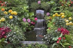 λουλούδια θαυμάσια Στοκ Εικόνες