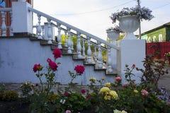 Λουλούδια κήπων στο σύνολο εκκλησιών της Ορθόδοξης Εκκλησίας στοκ εικόνες