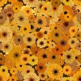 λουλούδια κίτρινα ελεύθερη απεικόνιση δικαιώματος