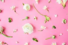 Λουλούδια και πέταλα στο ρόδινο υπόβαθρο Επίπεδος βάλτε, τοπ άποψη στοκ φωτογραφίες με δικαίωμα ελεύθερης χρήσης
