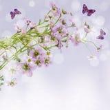 Λουλούδια και πεταλούδα στην ανασκόπηση Στοκ Εικόνες