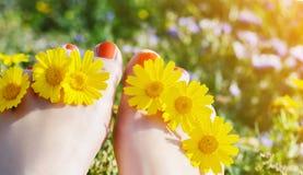 Λουλούδια και pedicure μιας νέας γυναίκας στοκ φωτογραφία
