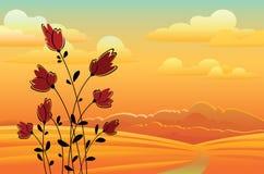 Λουλούδια και sanset Απεικόνιση αποθεμάτων