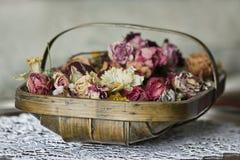 λουλούδια καλαθιών Στοκ εικόνες με δικαίωμα ελεύθερης χρήσης