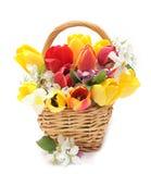 λουλούδια καλαθιών Στοκ φωτογραφία με δικαίωμα ελεύθερης χρήσης