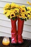 λουλούδια μποτών Στοκ Εικόνα