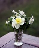 Λουλούδια ναρκίσσων σε μια ανθοδέσμη Στοκ φωτογραφία με δικαίωμα ελεύθερης χρήσης