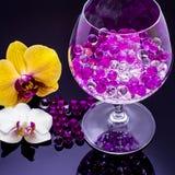Λουλούδια ορχιδεών στο υψηλό γυαλί στις μαύρες διαφανείς σφαίρες υποβάθρου Στοκ Εικόνες