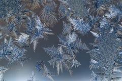Λουλούδια πάγου στο γυαλί Στοκ φωτογραφία με δικαίωμα ελεύθερης χρήσης