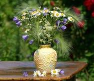 λουλούδια πεδίων ανθο&del Στοκ Φωτογραφία