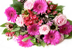 λουλούδια που απομονών στοκ εικόνα με δικαίωμα ελεύθερης χρήσης