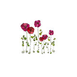 λουλούδια που διευκ&rho Στοκ φωτογραφία με δικαίωμα ελεύθερης χρήσης