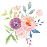 Λουλούδια ρύθμισης ανθοδεσμών μούρων Watercolour ρόδινα γαμήλια αρκετά ελεύθερη απεικόνιση δικαιώματος