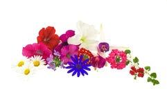 λουλούδια ρύθμισης Στοκ εικόνες με δικαίωμα ελεύθερης χρήσης