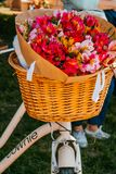 Λουλούδια σε ένα καλάθι ποδηλάτων στοκ εικόνες
