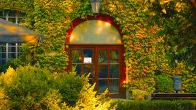 Λουλούδια σε ένα μπαλκόνι στην Πολωνία - εικόνα στοκ φωτογραφία με δικαίωμα ελεύθερης χρήσης