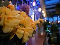 Λουλούδια σε μια θερμή νύχτα Στοκ φωτογραφία με δικαίωμα ελεύθερης χρήσης