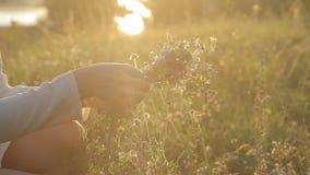 Λουλούδια στα χέρια ενός κοριτσιού στο ηλιοβασίλεμα απόθεμα βίντεο