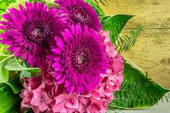 Λουλούδια στην πορφύρα χρώματος με τα πράσινα φύλλα Στοκ εικόνες με δικαίωμα ελεύθερης χρήσης