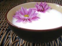 Λουλούδια στο γάλα στοκ φωτογραφία με δικαίωμα ελεύθερης χρήσης