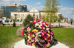 Λουλούδια στο Γκρόζνυ Στοκ Φωτογραφία