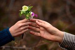 Λουλούδια στο δώρο Στοκ Εικόνες