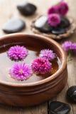 Λουλούδια στο κύπελλο για aromatherapy Στοκ εικόνα με δικαίωμα ελεύθερης χρήσης