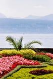 Λουλούδια στο χωριό Ouchy στο ανάχωμα της Γενεύης λιμνών στη Λωζάνη Στοκ Εικόνα