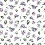 Λουλούδια σχεδίων Watercolor ελεύθερη απεικόνιση δικαιώματος