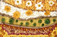 λουλούδια σύνθεσης Στοκ Φωτογραφίες