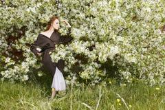 Λουλούδια της Apple γύρω από τη γυναίκα Στοκ εικόνες με δικαίωμα ελεύθερης χρήσης