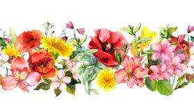 Λουλούδια τομέων, θερινές χλόες και φύλλα Επανάληψη των οριζόντιων συνόρων watercolor απεικόνιση αποθεμάτων
