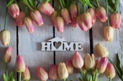 Λουλούδια, τουλίπες, υπόβαθρο, άσπρο, ξύλινο, ελαφρύ υπόβαθρο, όμορφα λουλούδια Στοκ Φωτογραφία