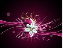 λουλούδια φαντασίας αν&a Στοκ Εικόνες