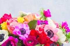 Λουλούδια Anemones στο υπόβαθρο πετρών Στοκ φωτογραφίες με δικαίωμα ελεύθερης χρήσης