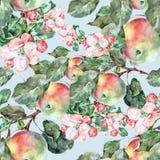Λουλούδια Apple Watercolor με τα φρούτα Άνευ ραφής σχέδιο χειροτεχνίας σε ένα μπλε υπόβαθρο Στοκ Φωτογραφία