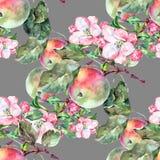 Λουλούδια Apple Watercolor με τα φρούτα Άνευ ραφής σχέδιο χειροτεχνίας σε ένα γκρίζο υπόβαθρο Στοκ φωτογραφίες με δικαίωμα ελεύθερης χρήσης