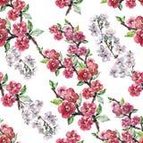 Λουλούδια Apple Watercolor με το κεράσι λουλουδιών Άνευ ραφής σχέδιο χειροτεχνίας σε ένα άσπρο υπόβαθρο Στοκ φωτογραφία με δικαίωμα ελεύθερης χρήσης