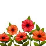Λουλούδια background poppies red white επίσης corel σύρετε το διάνυσμα απεικόνισης διανυσματική απεικόνιση