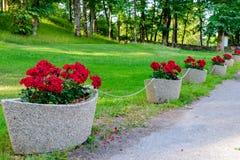 Λουλούδια flowerpots μορφής βαρκών Στοκ φωτογραφία με δικαίωμα ελεύθερης χρήσης
